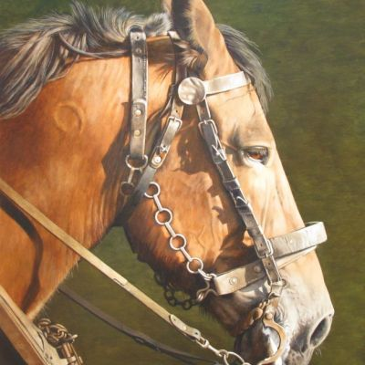 <strong>Paardenhoofdstel.Afm.60x50cm</strong>