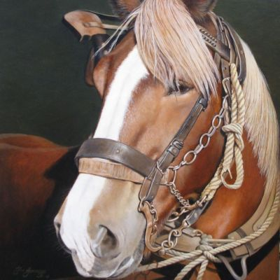 <strong>Paardenhoofdstel. Afm.60x50cm</strong>