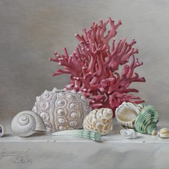 <strong>Dentalium Elephantinum, zee egel en rode koraal. Afm. 18x24 cm.</strong>